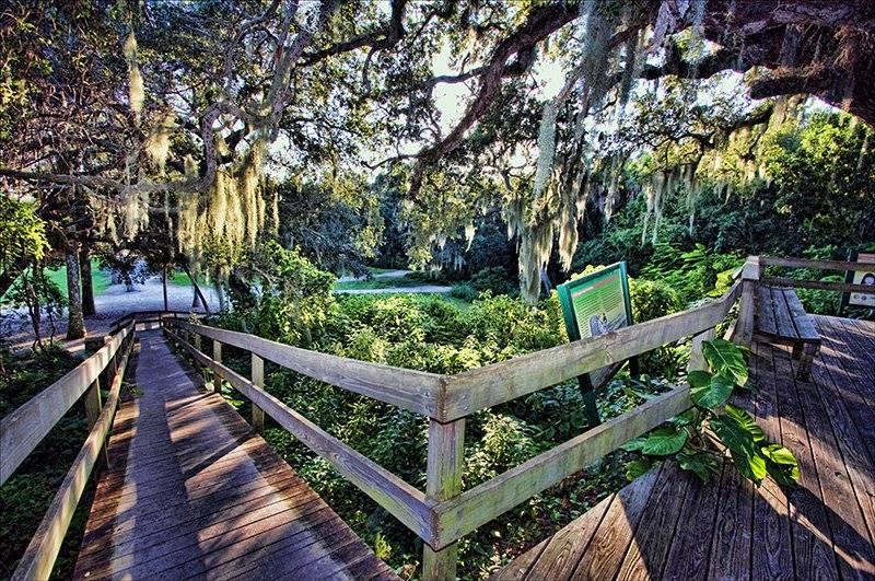 Emerson Point Preserve Nature Tour